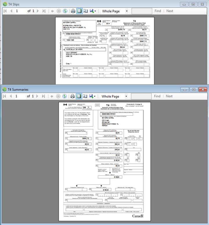 T4, T4 summary form printing